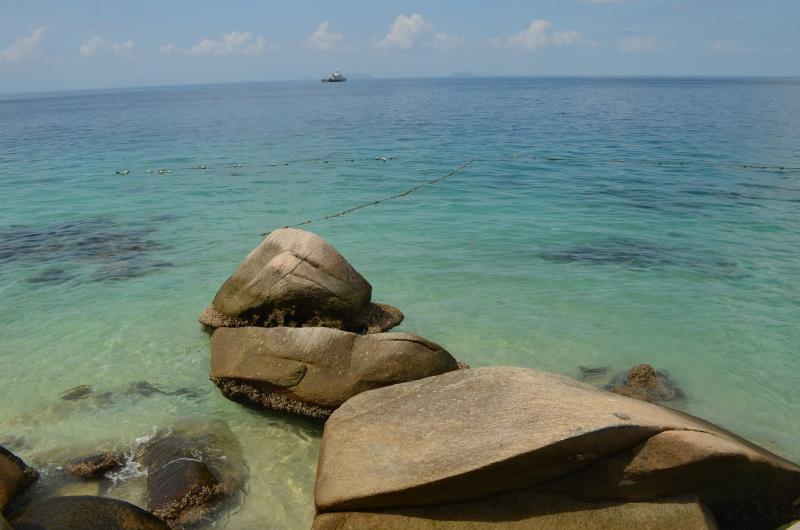 Haie, Nemo und ich – voll verknallt in die malaysische Unterwasserwelt