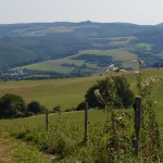 Pfälzer Höhenweg: Wie ich in der Heimat meine Liebe zum Wandern fand und mich nebenbei selbst heilte