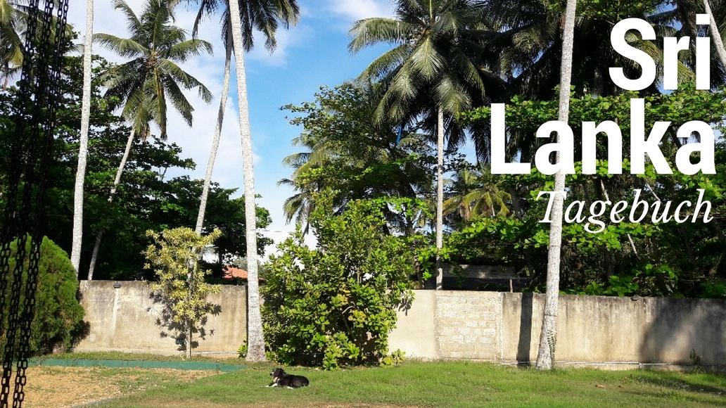 Sri lanka Coco Cabana