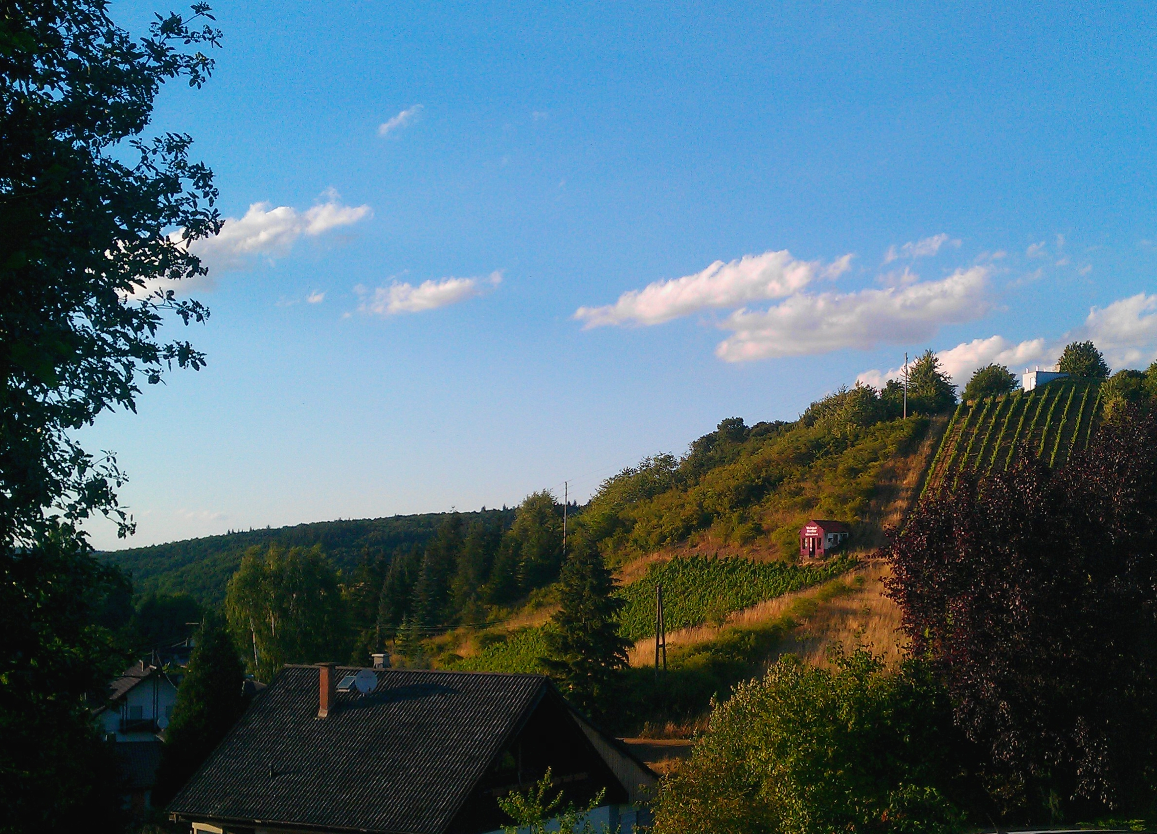 Nordpfalz