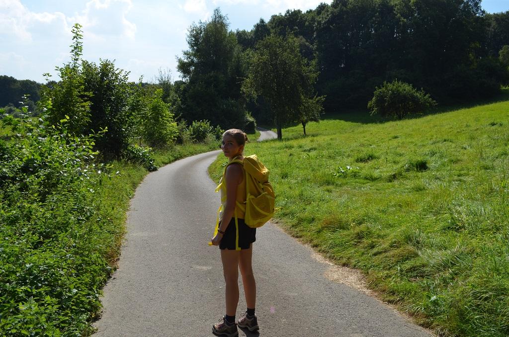 pfaelzerhoehenweg